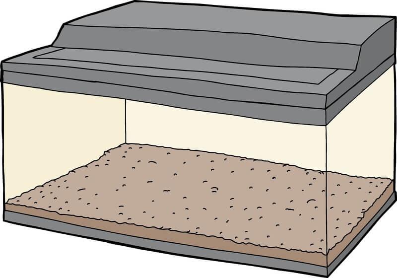 Terrarium pour pogona : illustration d'un terrarium 120x60x60